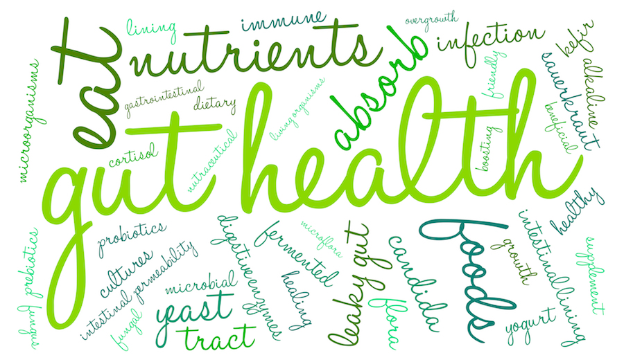 Good Health Starts in the Gut